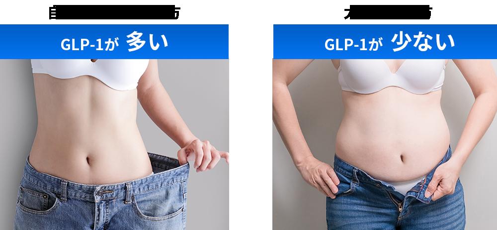 痩せやすい体質と太りやすい体質