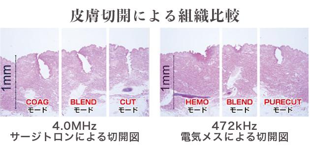 皮膚切開による組織比較